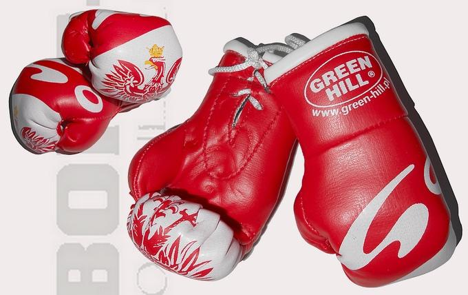 Mini rękawiczki Go Sport, Mini rękawiczki czerwone z orzełkiem,, Mini gloves Green Hill Blue